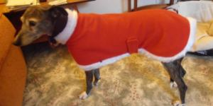 Carrie wearing her Christmas Fleece coat