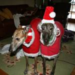 Christmas-Fleece-Coats-for-Dogs-2
