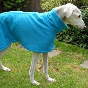 Lenny wearing a turquoise milgi coats fleece
