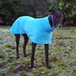 MilgiCoats Ozzy Greyhound Coat 1