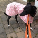 bitser in her pink roses walking out coat