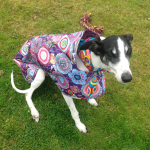 daisy-in-her-purple-haze-raincoat-from-milgicoats