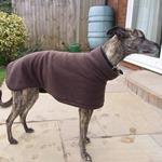dark chocolate greyhound fleece coat