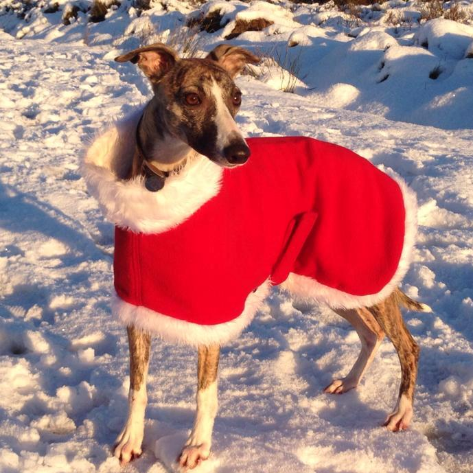 father christmas greyhound fleece coat