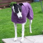 Imperial Purple Fleece Coat Modelled by Penny