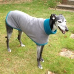 greyhound coat in charcoal and teal fleece