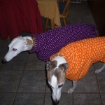 greyhound fleece coat in orange and purple designs