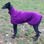 imperial purple fleece coat for greyhounds