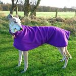 imperial purple greyhound fleece coat