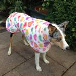 lurcher-fleece-coat-from-milgi-coats