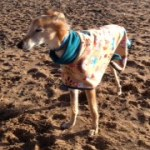 lurcher fleece coat in woodland creatures design