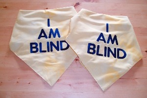 """I am blind"" embroidered bandana for dogs"