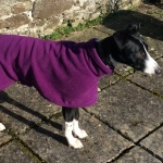 tyler wearing imperial purple lurcher fleece coat