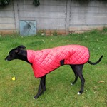 red quilted raincoat modelled by Rory