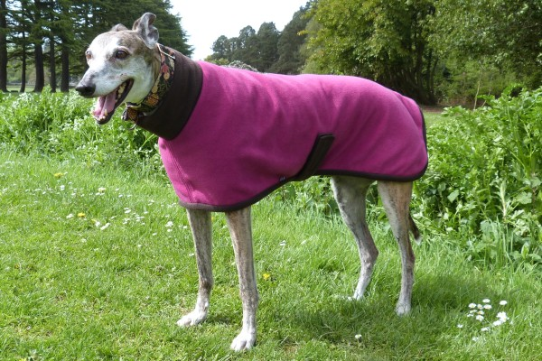 Greyhound Fleece Coat Cherries and Chocolate Design