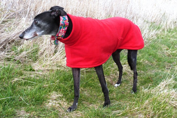 Fleece Coat for Greyhounds Lurchers Whippets in Bright Red