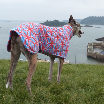 fleece coat for greyhounds in union jack design