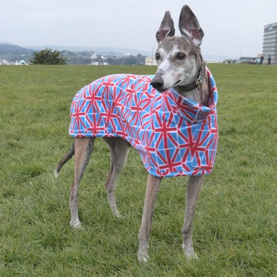 Union Jack Greyhound Fleece Coat