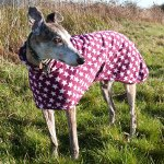 "Greyhound Lurcher and Whippet Fleece Coat in ""Very Berry Star"" design"