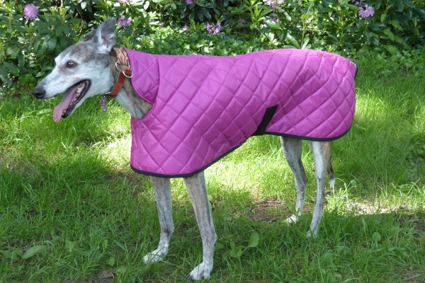 greyhound quilted coat in cerise pink