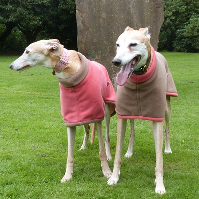 greyhound fleece coats modelled by poppy and henry