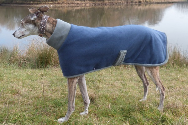 greyhound coat in french navy and charcoal design
