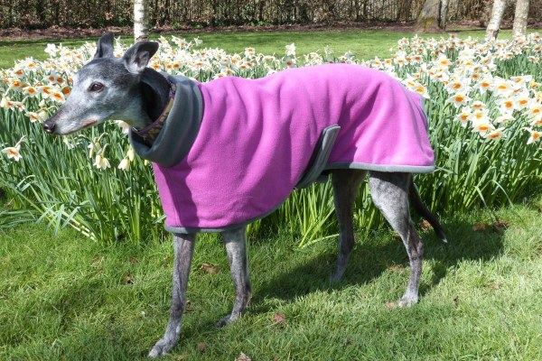 greyhound coat - greyhound fleece coat
