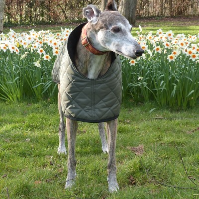 quilted greyhound waterproof coat in olive green