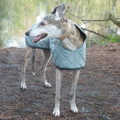 Greyhound Coat in Sage Green Quilted Fabric