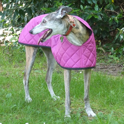 quilted greyhound coat in cerise pink