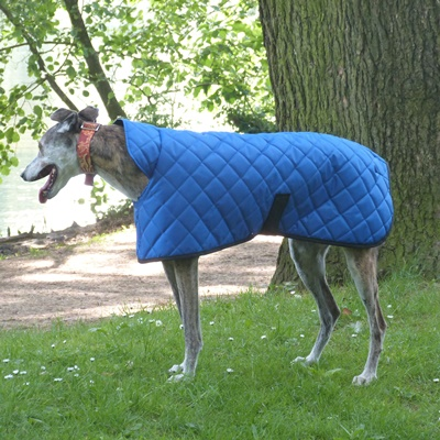 quilted greyhound coat in royal blue