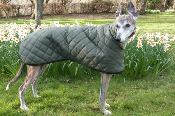 quilted greyhound raincoat in sage green