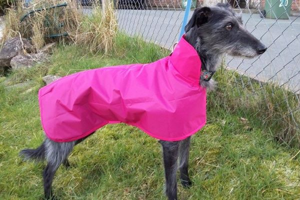 lurcher waterproof coat