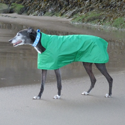 waterproof greyhound coat made in uk